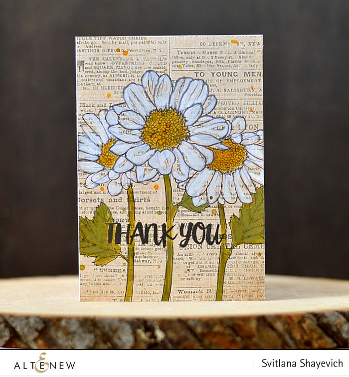 Altenew Spring Daisy focus. @s_shayevich #card #cardmaking #diy #papercrafts #handmade #altenew