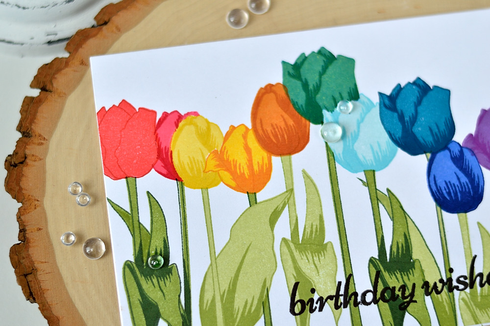 Rainbow of tulips with Altenew Tulip stamp set. Card by @s_shayevich