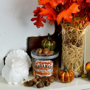 Fall and Thanksgiving Home Decor Tour. Video