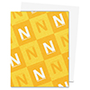 Neenah Classic Crest Smooth Solar White Cardstock 110 Lb