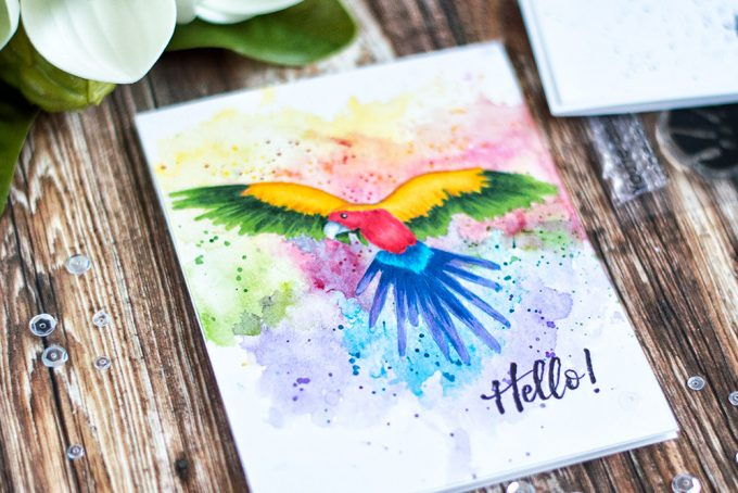 Color amazing parrot from Altenew Parrot Paradise Stamp Set with markers onto a ink smooshing background to create an unusual and interesting card. Card by @craftwalks