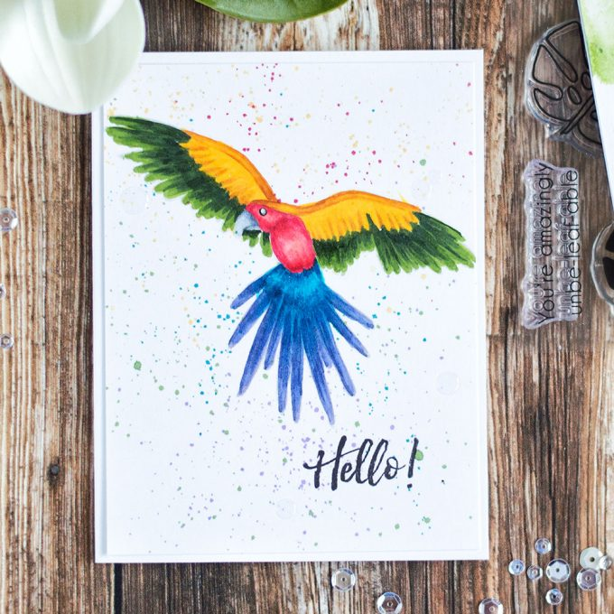 Color amazing parrot from Altenew Parrot Paradise Stamp Set with markers and add spray splatters onto background to create an unusual and interesting card. Card by @craftwalks