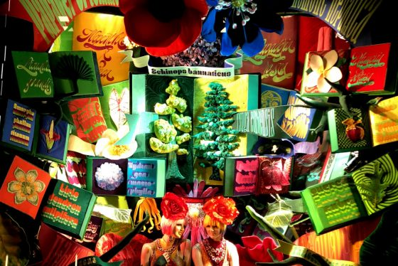 City Walks. Christmas In New York 2017. Bergdorf Goodman holiday windows