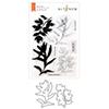 Altenew Dot Botanicals Stamp & Die Bundle