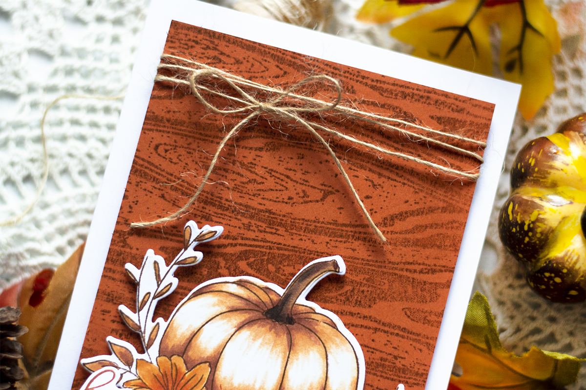 Pumpkin Thanksgiving Card. Cards by Svitlana Shayevich