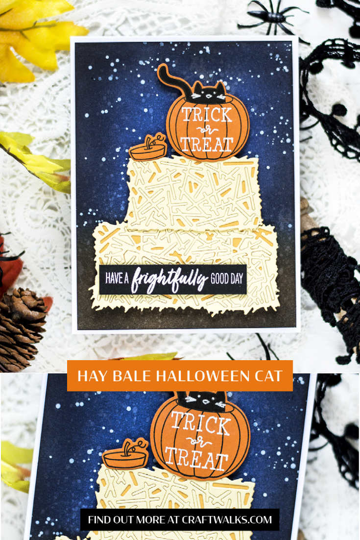 Hay Bale Halloween Cat. Card by Svitlana Shayevich