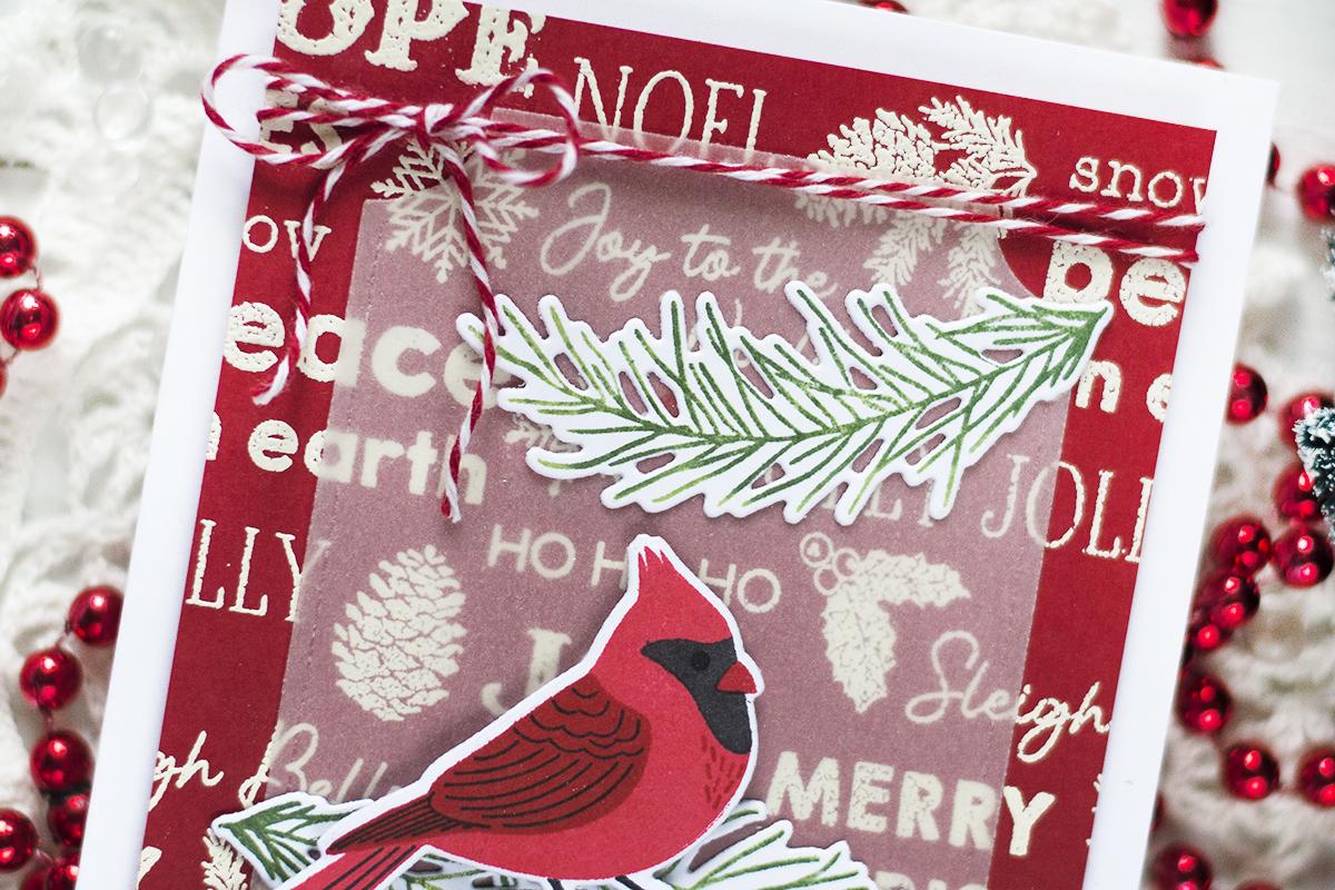 Christmas Background Cardinal Card. Card by Svitlana Shayevich
